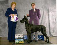 coal_best_of_breed_hamburg_ny_2010.jpg
